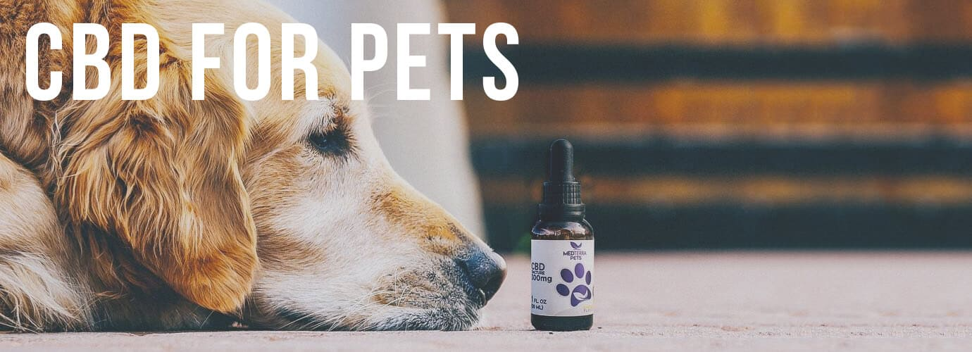 CBD.co Coupon Code For Pets