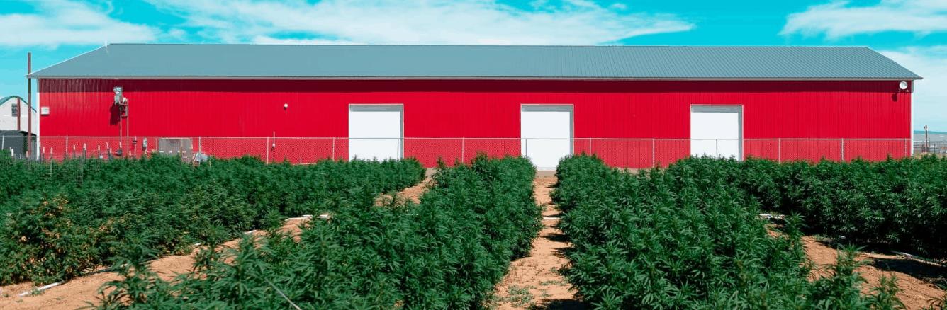 Veritas Farms CBD Coupon Code About