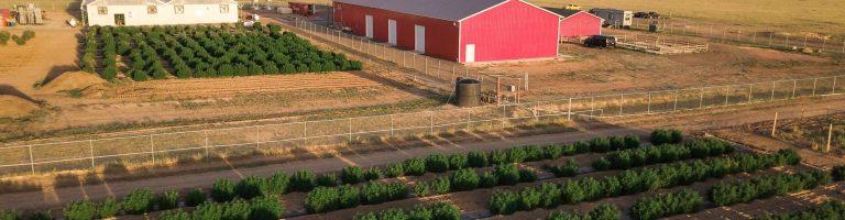 Veritas Farms CBD Coupon Code Shipping
