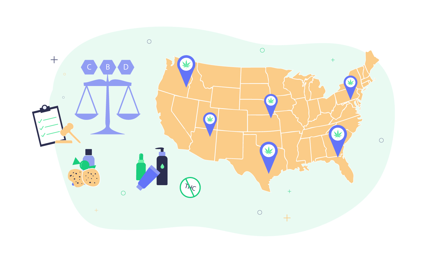 Is CBD Really Legal in All 50 States? Fact vs Myth
