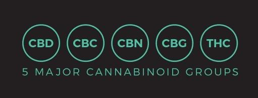 EcoSciences CBD Coupon Code Cannabinoid Groups