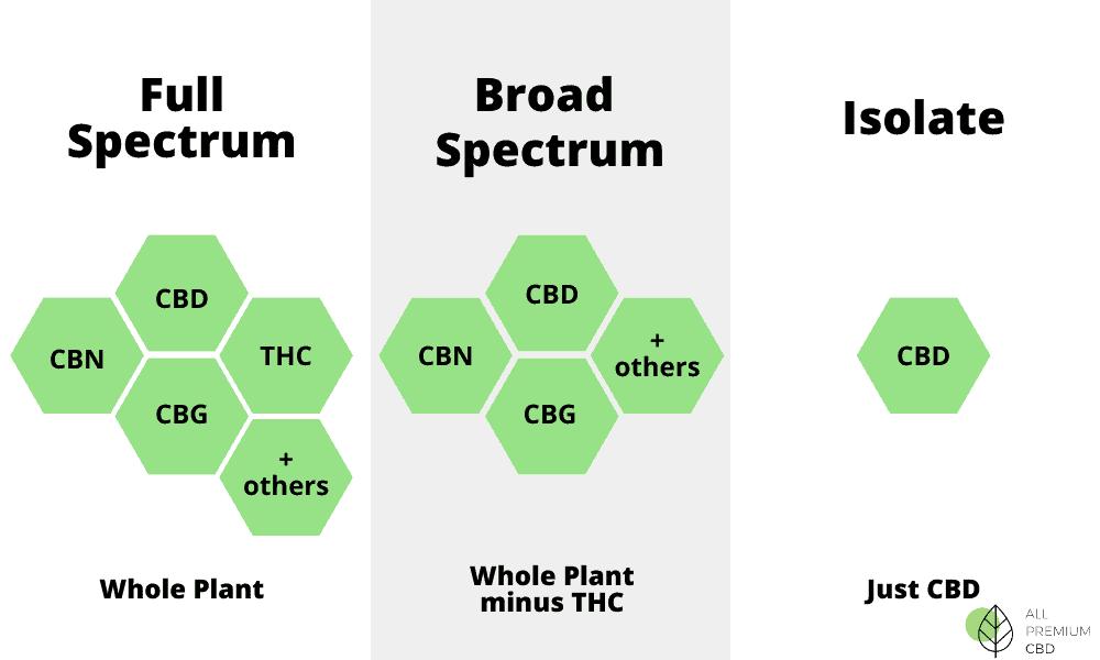 All Premium CBD Coupon Code Different Types