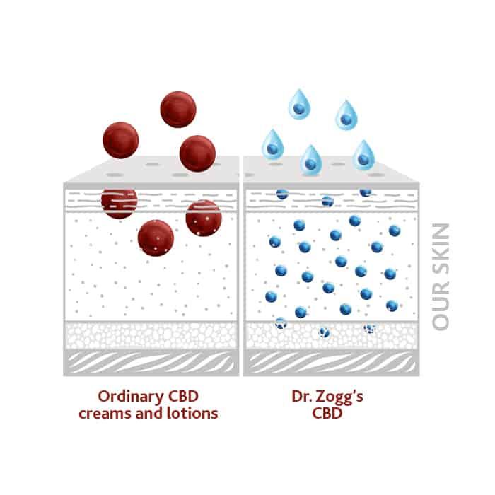 Dr. Zoggs Amazing CBD Coupon Code More Advance
