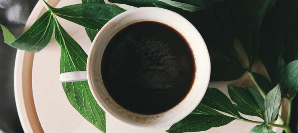 Allo CBD Coupons Coffee Bean Bud