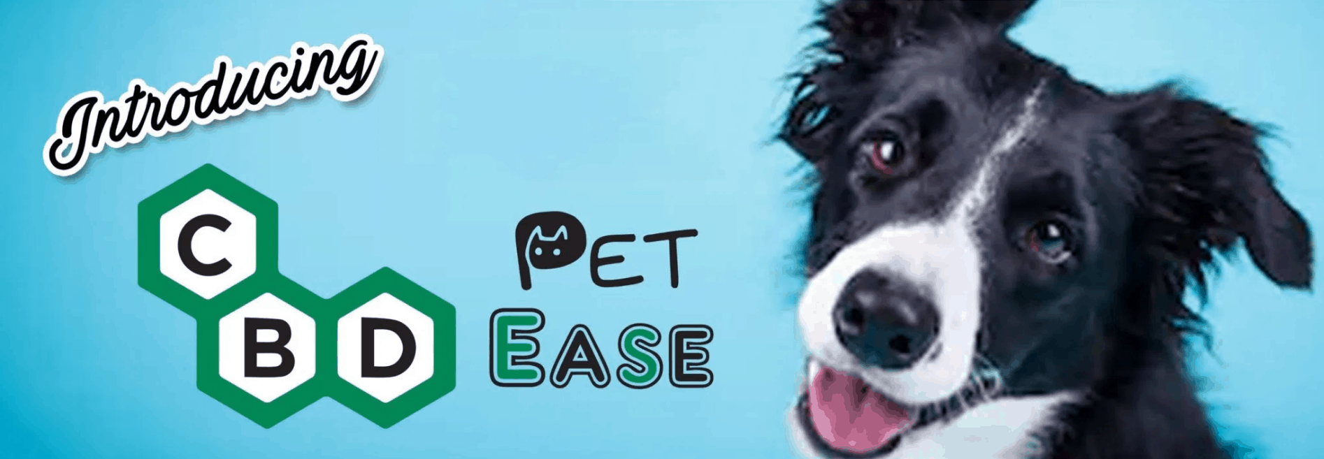 Pet Friendly Products By CBD Ease