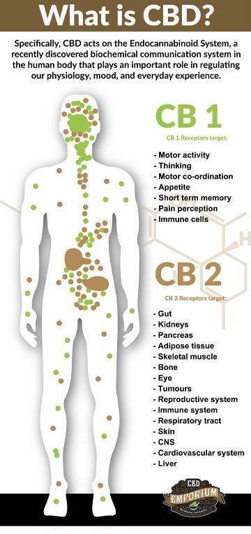 Information provided by CBD Emporium Regarding CBD