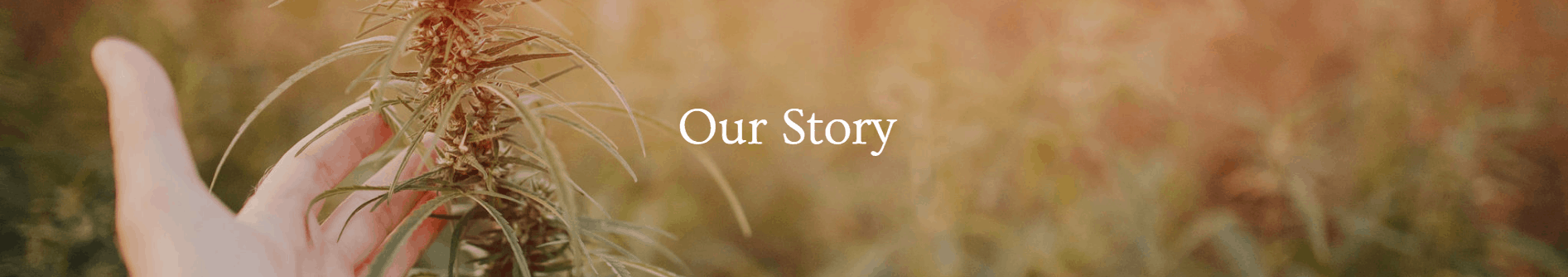 Nira CBD Coupons Our Story