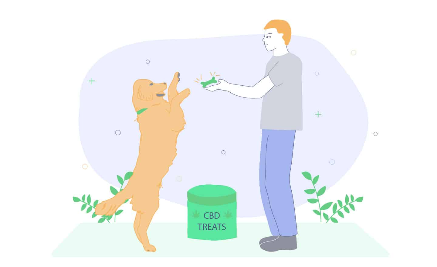best CBD dog treat for joint pain