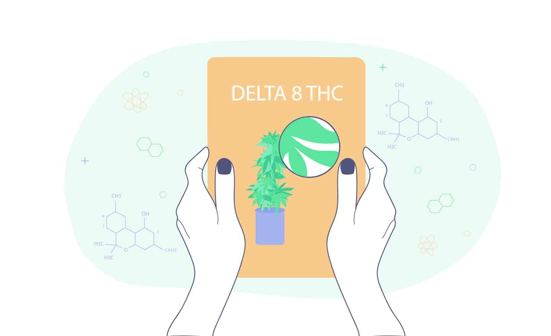 delta-8-thc guide