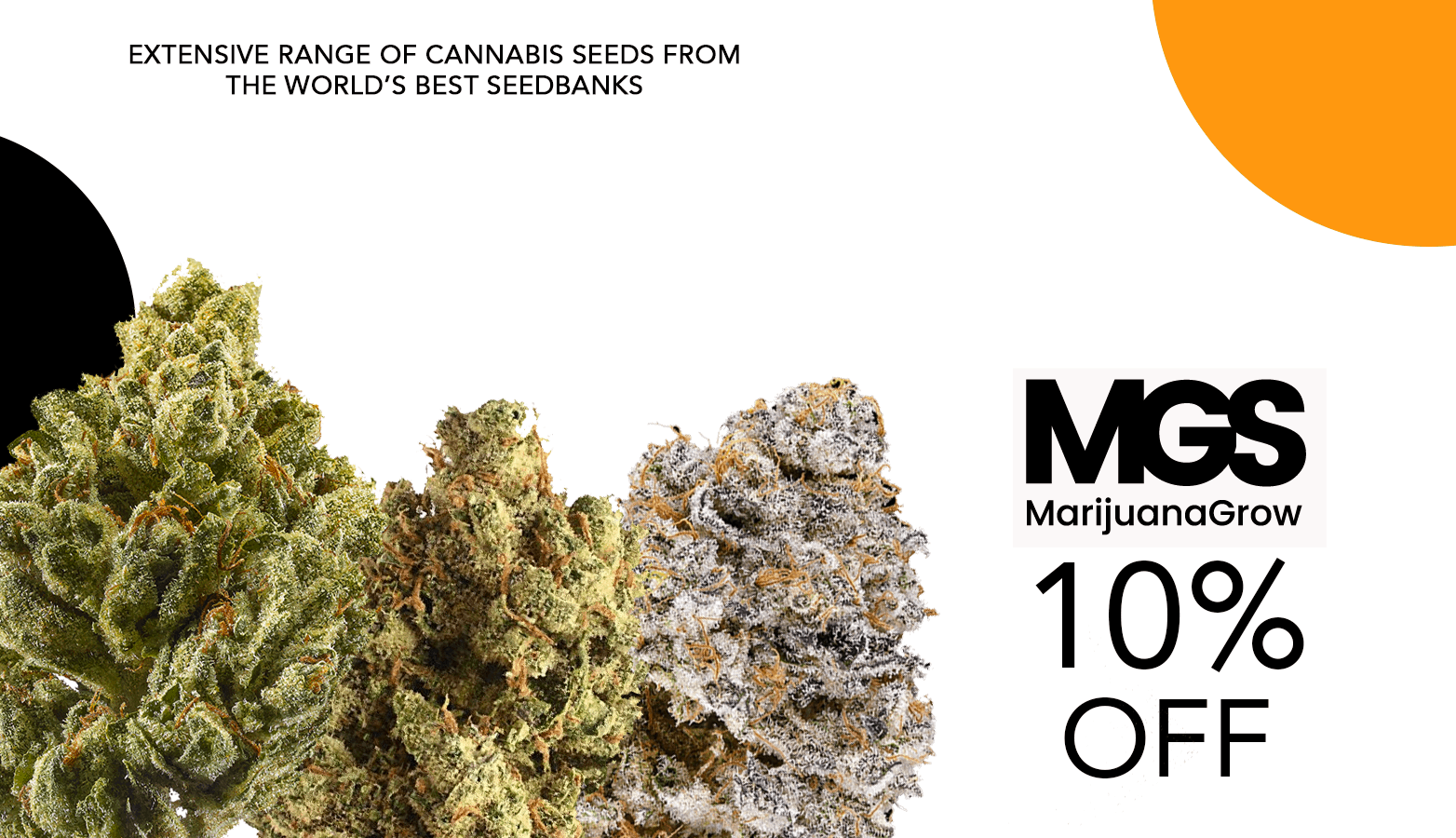 Marijuana Grow Shop Seeds Coupon Code Offer Website