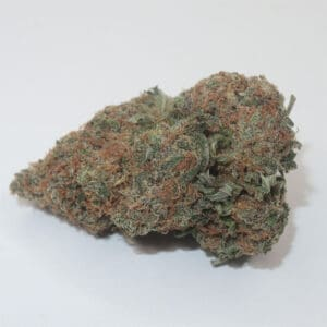 My Green Solution Cannabis Coupons Chocolope Kush