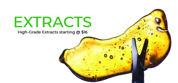 Cannabis Shatter and Extracts Online - XpressGrass