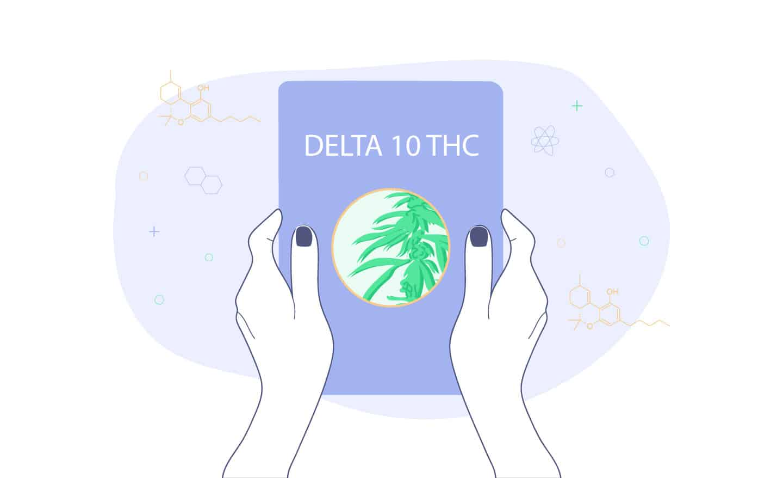 delta 10 thc guide