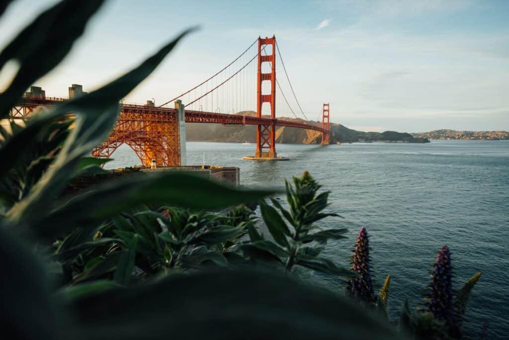 San Francisco is a cannabis-friendly vacation city