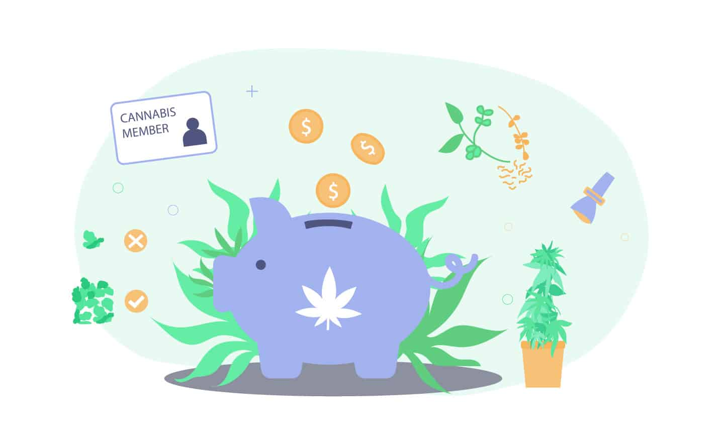 Learn how to save on cannabis