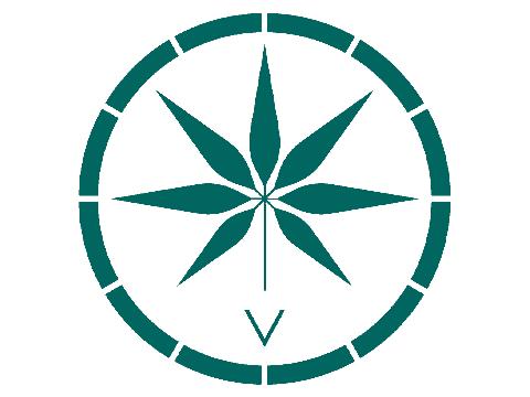 Voyager CBD Coupon Code Logo